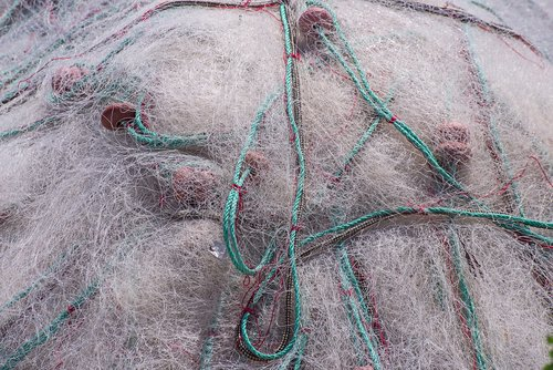 net  fishing net  fishing