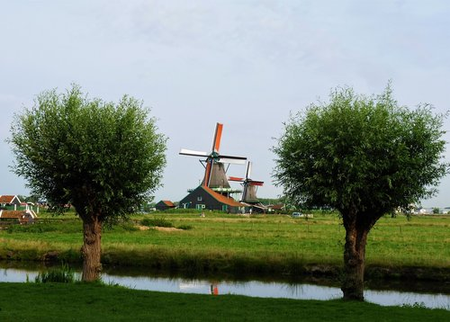 netherlands  trees  channel