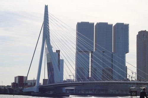 netherlands  rotterdam  architecture