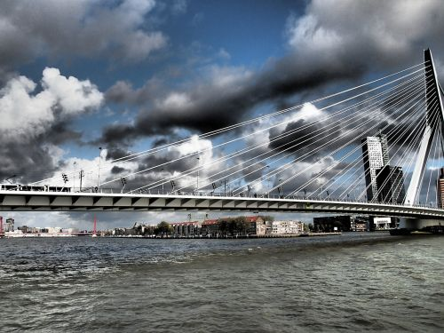 netherlands rotterdam bridge