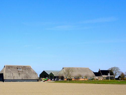 netherlands landscape scenic