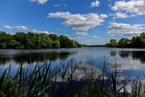 nettetal dewitt lake