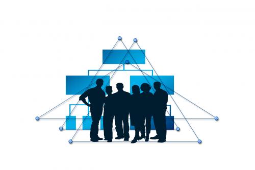 network connection business idea