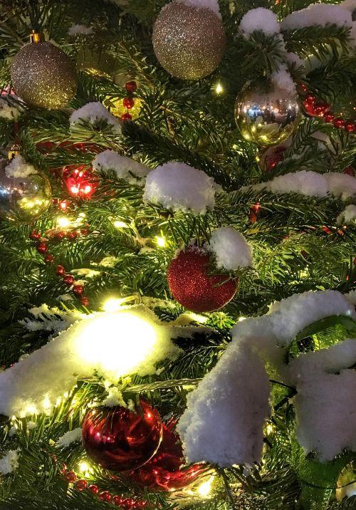 new year's eve illumination christmas tree