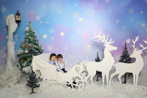 new year's eve sleigh with reindeer children's christmas photo shoot