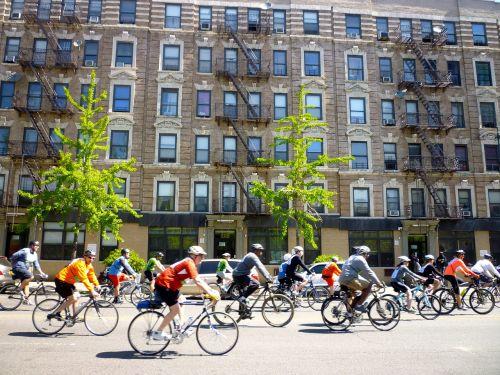 new york cyclists race