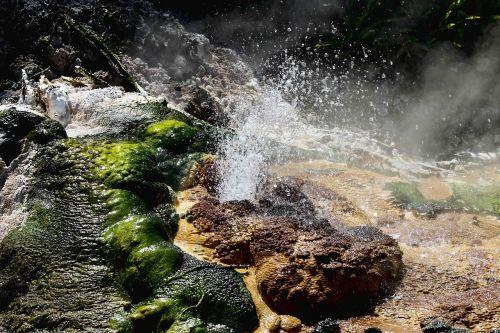 new zealand sulfur pools volcanic