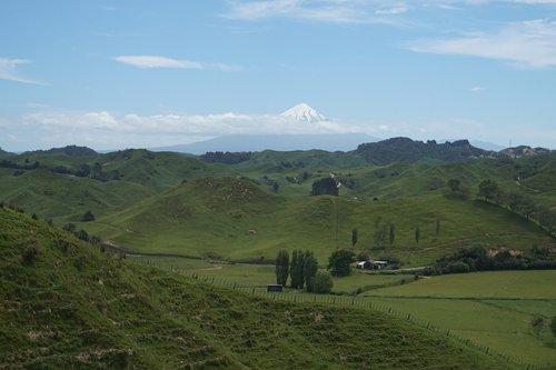 new zealand  neuseeland  nature