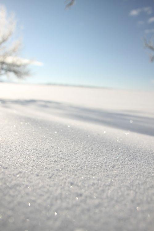 new zealand powder snow sparkle
