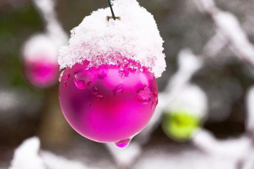 new zealand christbaumkugeln winter