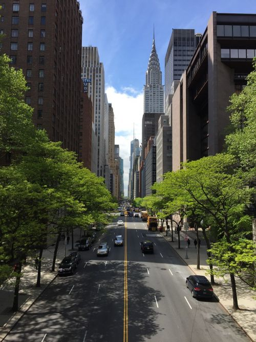 newyork manhattan green