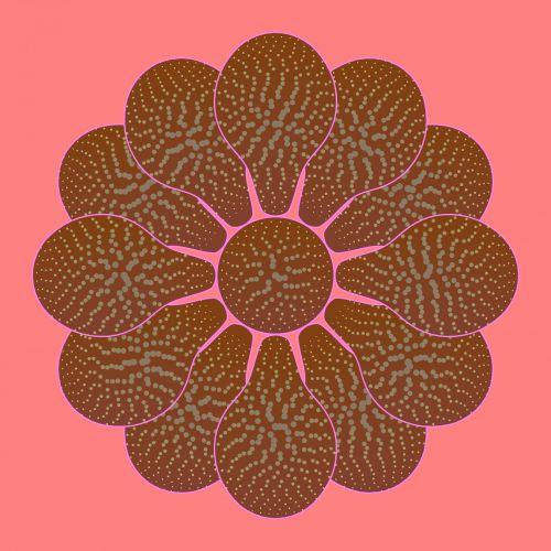 Nice Flower Brown