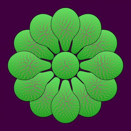 Nice Flower Green