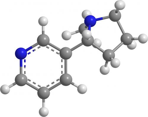 nicotine molecule chemistry organic chemistry