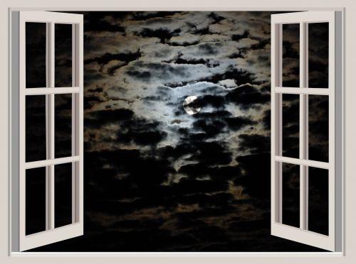 night moon night moon