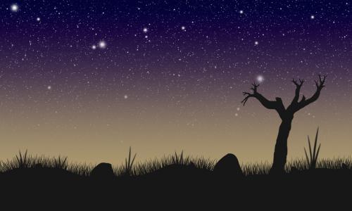night silhouette starring