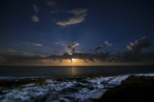 night  beach  sea