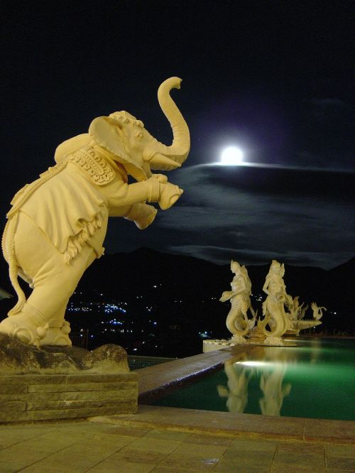 night moon elephant