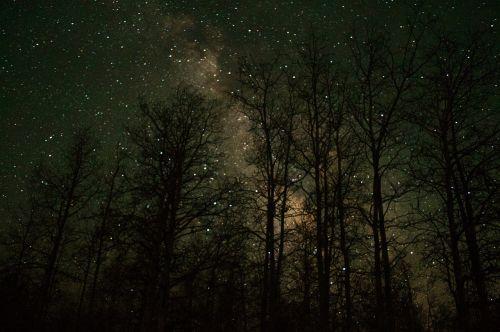 night sky milky way stars