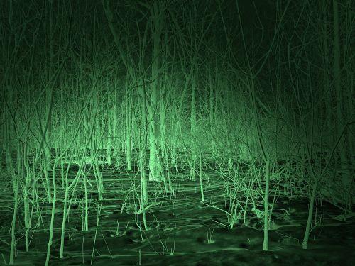 fonas, naktis & nbsp, vizija, naktis, tamsi, naktis, ieškoti, yeti, didžiapėdis, didelis & nbsp, pėdos, sasquatch, squatchinas, miškai, medžiai, aiškumas, fantazija, antgamtinis, mokslas & nbsp, fantastika, siaubas, mitas, legenda, folkloras, naktinio matymo scena
