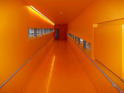 nightmare gang orange