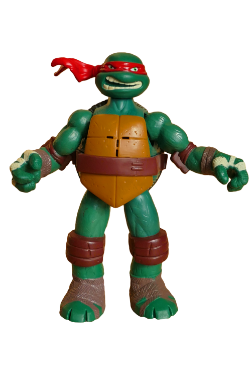 ninja turtle cartoon