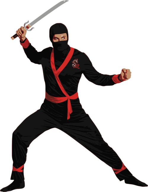 ninja people sword