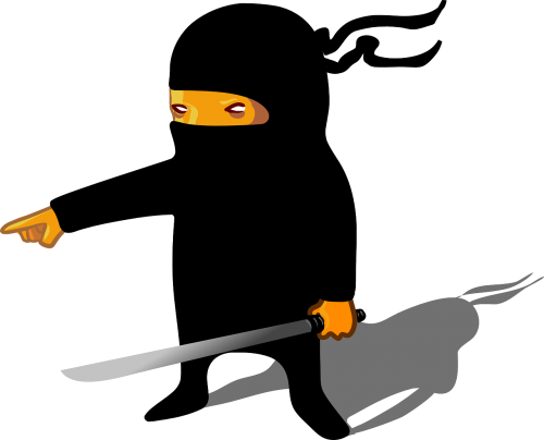 ninja man cartoon
