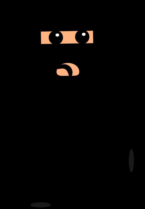 ninja cartoon fighter