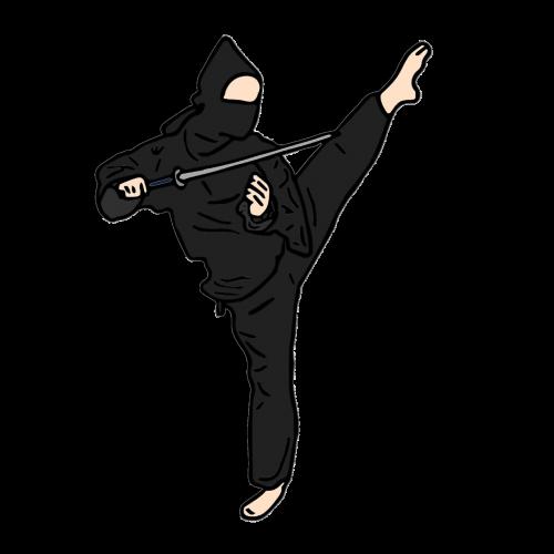 ninja fighter hero