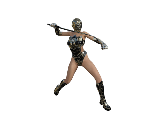 ninja warrior fighter
