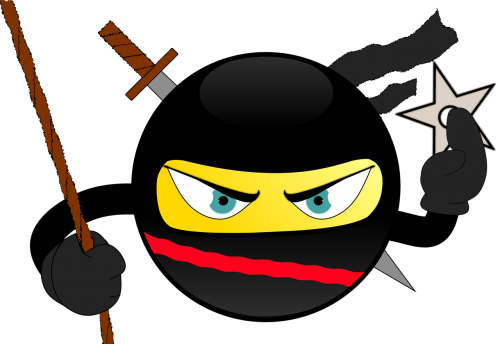 ninja smiley japan
