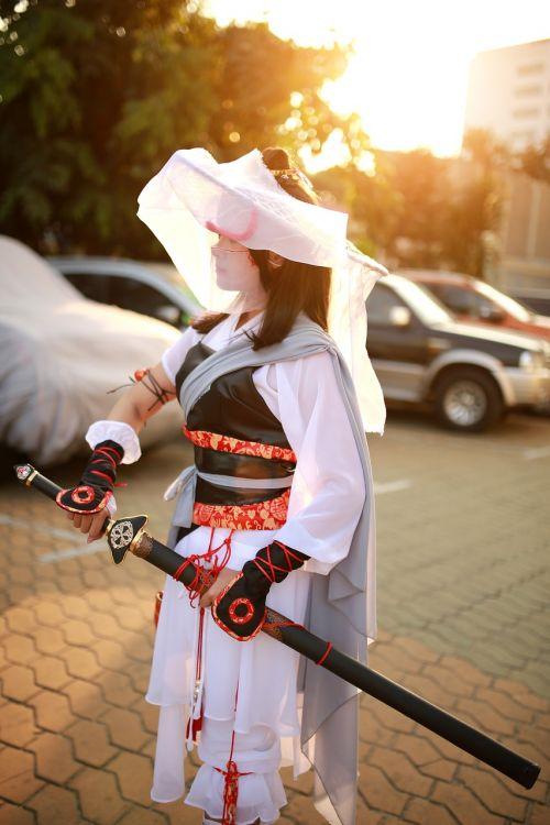 ninja hero samurai