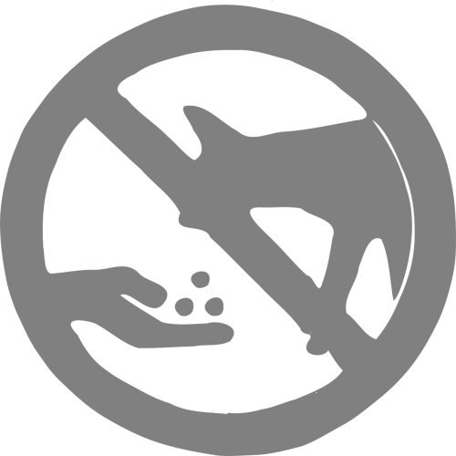 no feeding coyotes wild animal