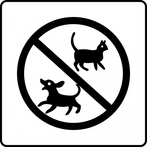 no pets cat dog