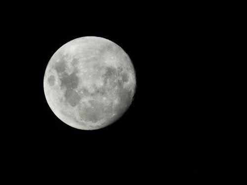 nocturne dark full moon