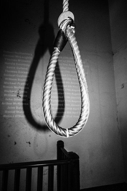 noose  hangman  rope