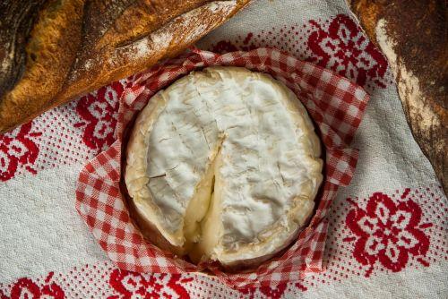 normandy camembert cheese