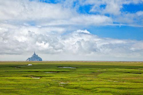 Normandy Pasture