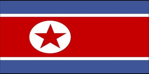 north flag korea