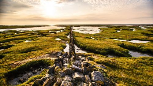 north sea north frieland nature