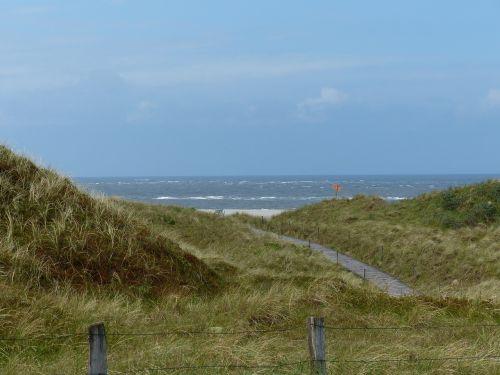 north sea dunes sea