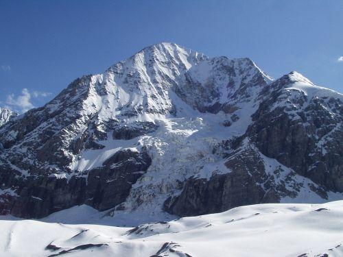 north wall königsspitze alpine