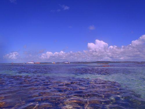 northeast beaches brazil