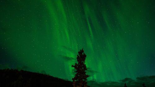 northern lights green aurora