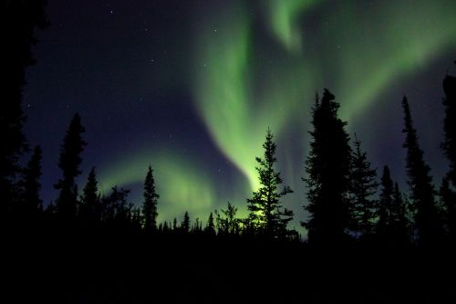 Northern Lights In The Wilderness