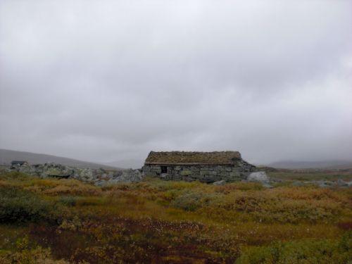 norway hardangervidda landscape