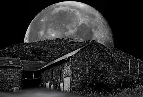 nostalgia moon farm
