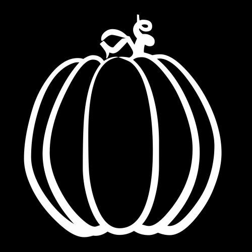 Not Carved Pumpkin