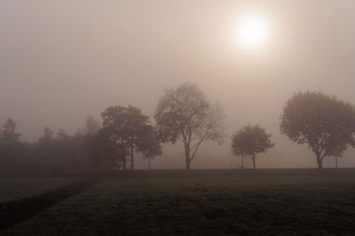 november day cold foggy